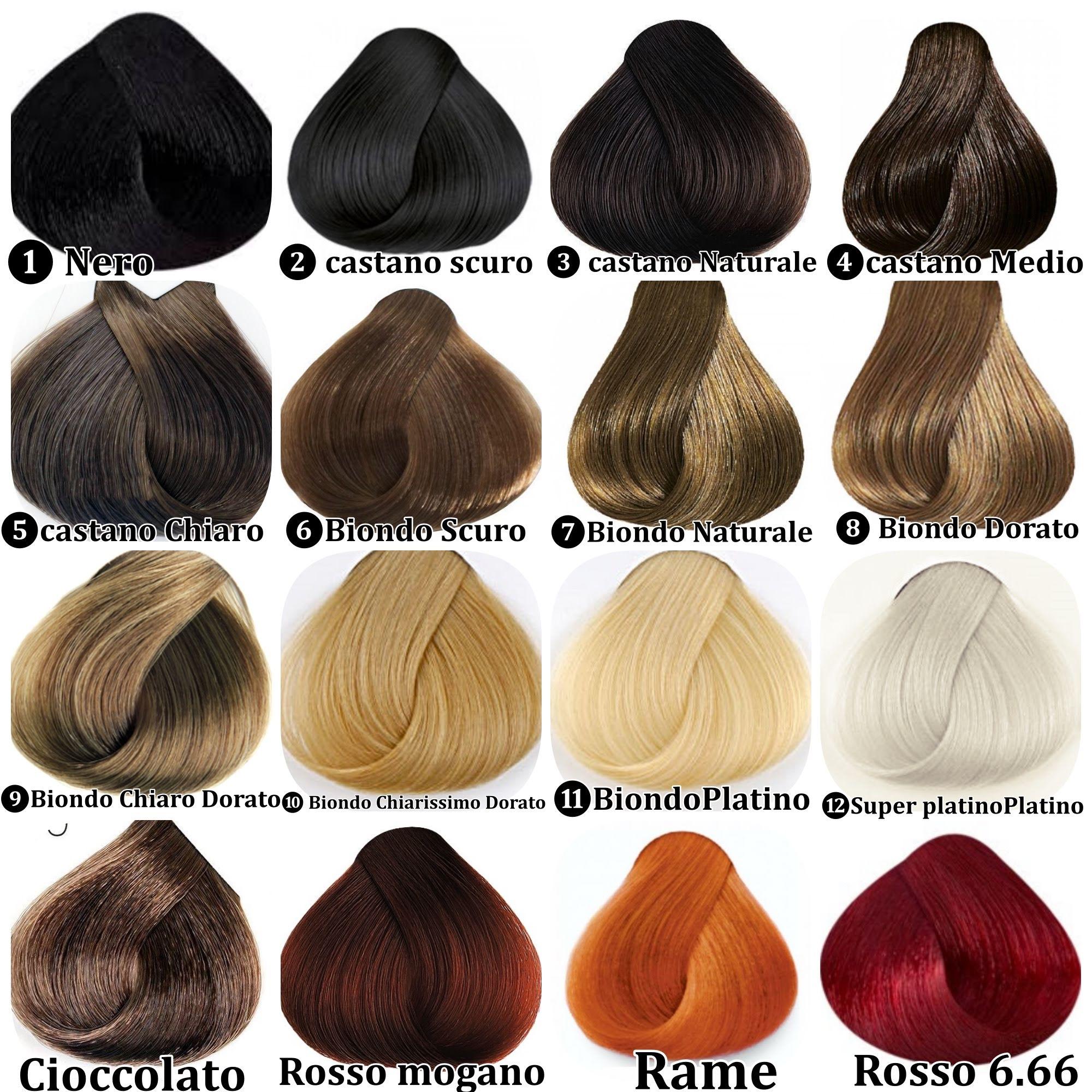 Cartella colori Capelli XL